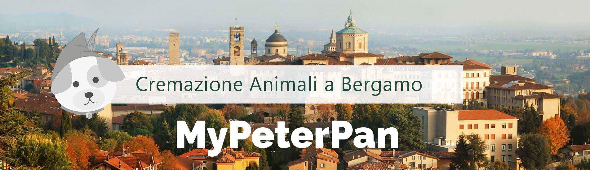 Cremazione animali Bergamo - MyPeterPan