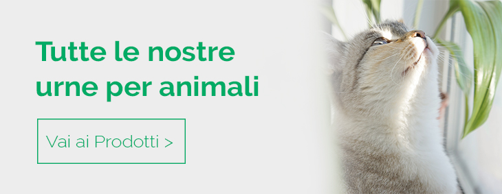 Catalogo completo di urne per animali